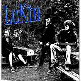 Lukin - I Just Thought I'd Let You Know (live) / Hit Me (live)