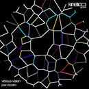 Kinetic Groove - Jose Vizcaino - Vicious Vision