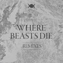 ":PAPERCUTZ - ""Where Beasts Die"" Single / Rmxs"