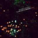 We Cut Corners - 'Yet [Sacred Animals Remix]'