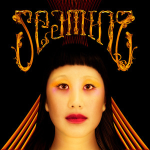 SEAMING - Where's my thermometer? (bonus track, digital album)