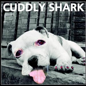 Cuddly Shark - What Goes Around