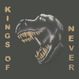 Damn Vandals  - Kings Of Never