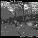 Amongst The Pigeons - A Daring Escape