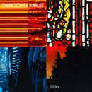 Darktown Jubilee - Stay (single version)