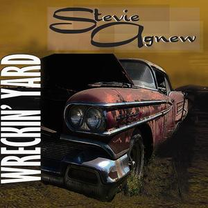 Stevie Agnew - The Mighty Bones