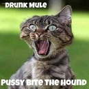 Drunk Mule - Pussy Bite The Hound