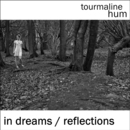tourmaline hum - In Dreams / Reflections
