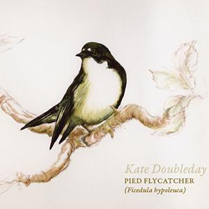 Kate Doubleday - Freefalling