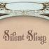 Silent Sleep