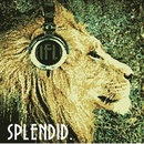 I Fight Lions - Splendid