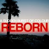 A Sudden Burst Of Colour - Reborn