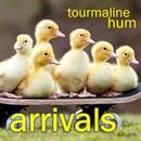 tourmaline hum - Arrivals