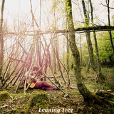 Danny Leigh - Leaning Tree