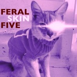 Feral Five - Skin (Rolo McGinty Club Mix)
