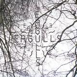 Dan McEvoy - Eagulls - Moulting