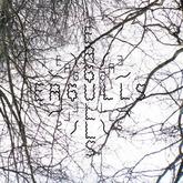 Eagulls - Nerve Endings (Dan McEvoy)