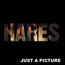 Hares - Just A Picture
