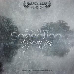 Sleepy Bass Recordings - Sensation Desperation