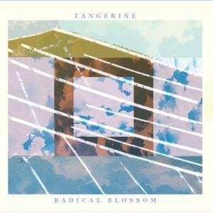 Tangerine - The Runner