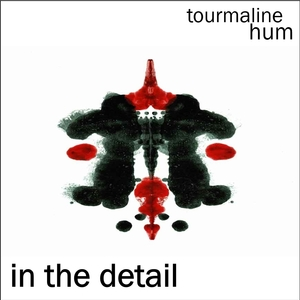tourmaline hum - In The Detail