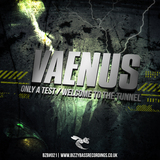 Bizzy Bass Recordings - Vaenus - Only A Test / Welcome To The Tunnel