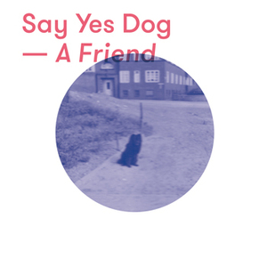 Say Yes Dog - Around My Neck