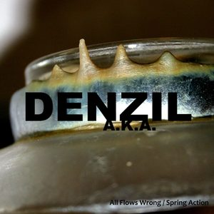 Denzil A.K.A. - All Flows Wrong