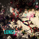 LUNGS - Not Mine/Hold Me