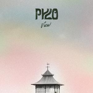 Pylo - View