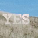 I Said Yes - Birds