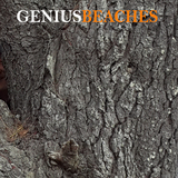 GENIUS - BEACHES