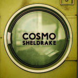 The Moss (Cosmo Sheldrake)