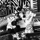 Postcode - Zebratronic