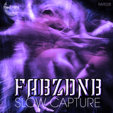 FABZDNB -  Slow Capture