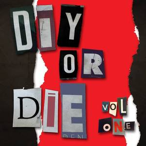 DIY or DIE Vol 1 - TWIN MIRRORS - New Edition