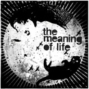 The Meaning of Life - Play Fuego