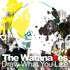 The Watanabes - There's Something Wrong