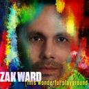 Zak Ward - This Wonderful Playground