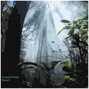 Skaarl - Tropical Haze - EP
