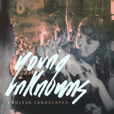 Endless Landscapes (Young Unknowns )