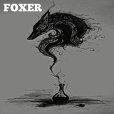 Foxer - The Great Brain Robbery