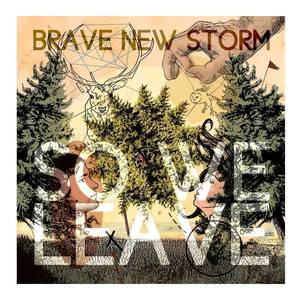 Brave New Storm - Walden
