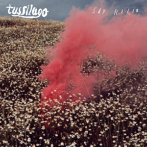 Tussilago - Say Hello