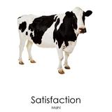 Satisfaction (Mahl )