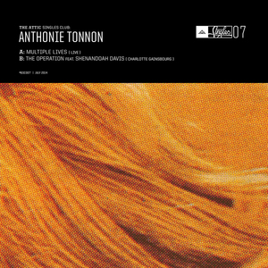 Anthonie Tonnon - The Operation feat. Shenandoah Davis ( Charlotte Gainsbourg cover_