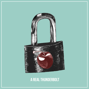 Paul Cook & The Chronicles - A Real Thunderbolt
