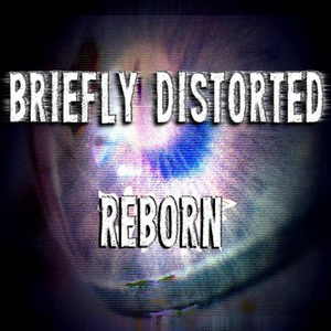Briefly Distorted  - Raven