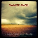 Siamese Angel - A Road Less Travelled
