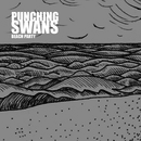 Punching Swans - Beach Party
